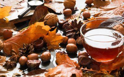 Les meilleures recettes de thé d'automne