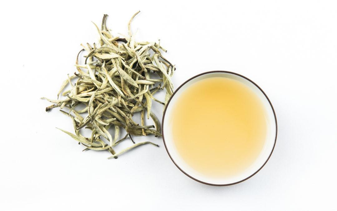 Qu'est-ce que le thé blanc ?