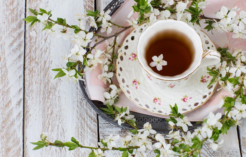 Thé de printemps
