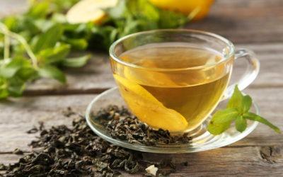 Qu'est-ce que le thé vert ?